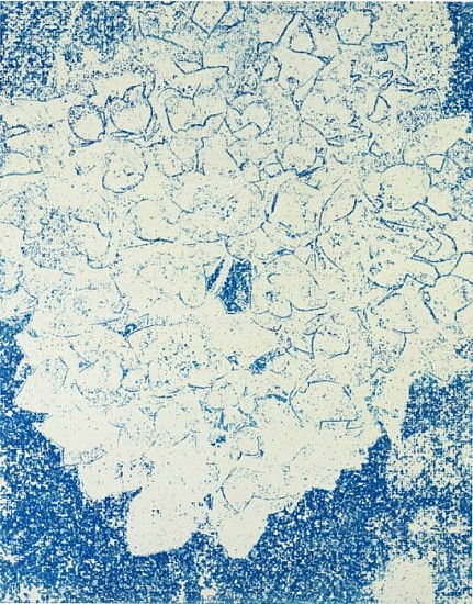 Eugene Brodsky, Hydrangea 2011, silkscreen ink on silk