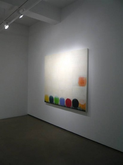Betty Merken, Missing Link Installation 2010