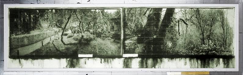 Judy Pfaff (LA), Til Skogen (ed. of 30) 2006, photogravure, hand applied dye on Crown Kozo paper