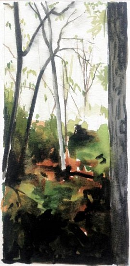 Peter Schroth, Path Between Trees 1 ink