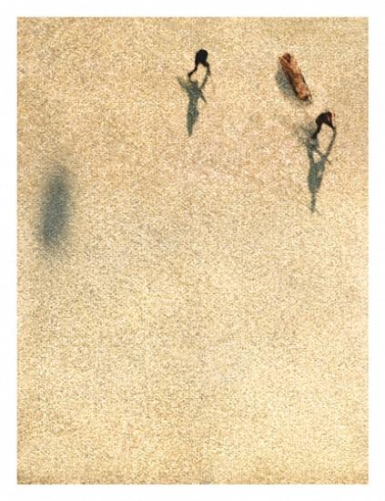 John Huggins (LA), Aspen #5, ed. of 17 2007, K-3 pigment print