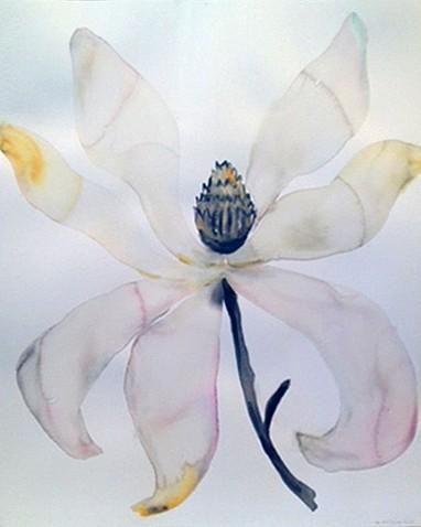 Kim McCarty (LA), Flower 2013, watercolor on paper