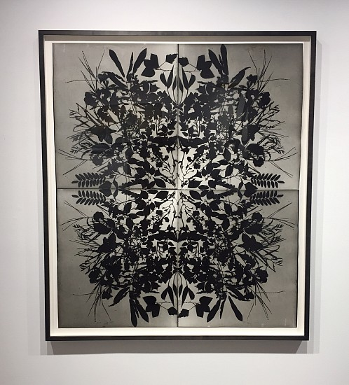 Wendy Small, Remedy (McCarren Park II) i 2016, black and white photogram