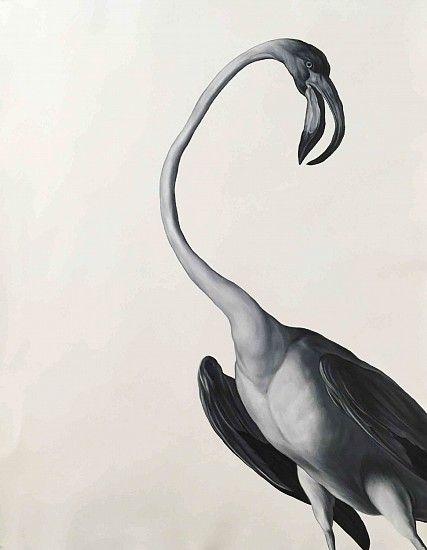 Shelley Reed, Flamingo (after Desportes) 2017, oil on paper