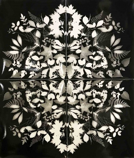 Wendy Small, Remedy - The Mountains 2018, black and white photogram